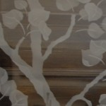 Aspen tree close-up