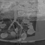 Aspen Tree glass tabletop
